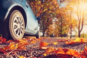 Revisão de Outono